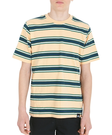 Dickies T-shirt Lithia Stripe Peach Brulee