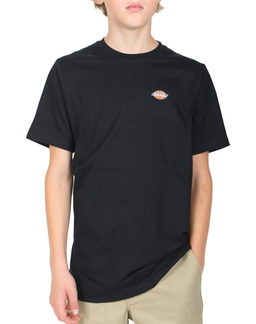 Dickies T-shirt Stockdale Black mini logo