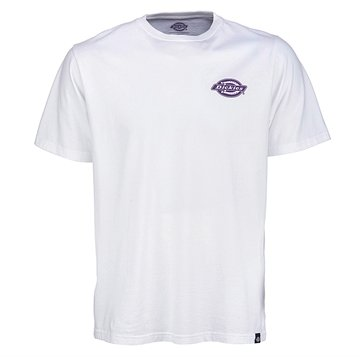 Dickies T-shirt mount union white