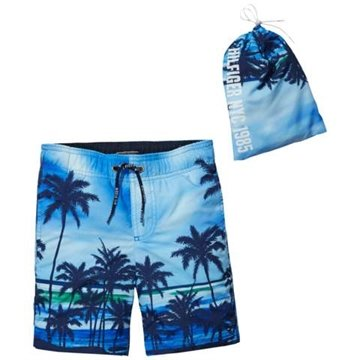 Tommy Hilfiger Swim Shorts Photo Palm Malibu Blue