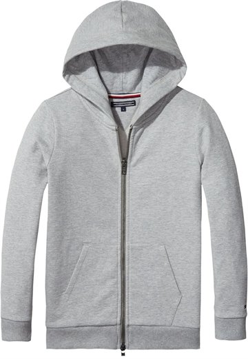 Tommy Hilfiger Girls Hoodie Zip Logo Grey 03073