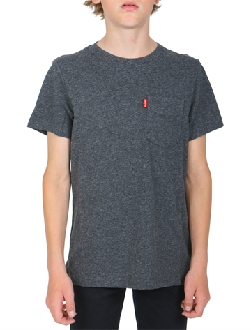 Levis T-shirt Grey MN10067 pocket
