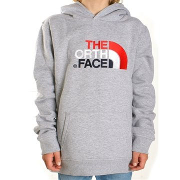 The North Face Hoodie Sweat Drew Peak light Grey Multi