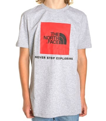 The North Face T-shirt Box s/s Light Grey Heather