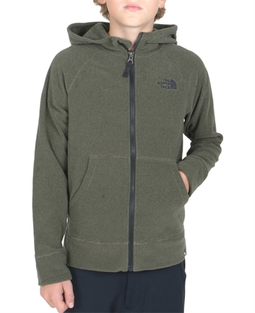 The North Face Fleece Hoodie Glacier New Taupe Green