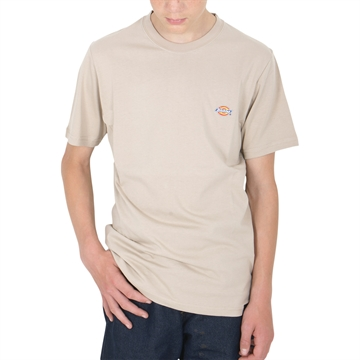 Dickies T-shirt Stockdale Sandstone