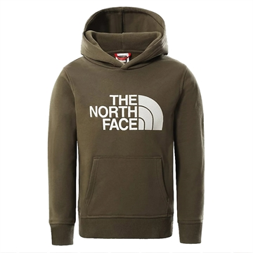 The North Face Sweat Hoodie Drew New Taupe Green